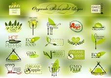 Organiska symboler och logoer för din design Arkivbilder