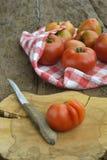 organiska tomater Royaltyfria Bilder