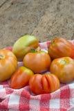 Organiska tomater på den gamla trätabellen Royaltyfri Bild