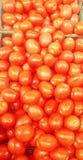 Organiska tomater på en bonde` s marknadsför Royaltyfri Bild