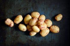 Organiska unga potatisar på en mörk bakgrund Högen av potatisar rotar Clous-up potatistextur Arkivbild