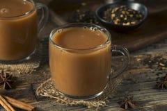 Organiska varma Chai Tea Drink Royaltyfria Foton
