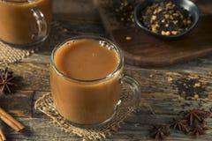 Organiska varma Chai Tea Drink Royaltyfri Fotografi