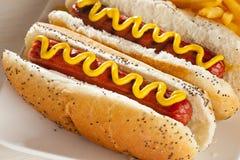 Organiskt alla nötköttHotdog royaltyfri fotografi