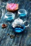 Organiskt blått te Anchan, Clitoria, fjärilsärta i en tekanna och koppar och en rökelse royaltyfri bild