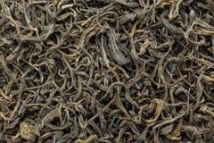 Organiskt grönt te (kameliasinensis) torkade långa sidor Royaltyfri Fotografi