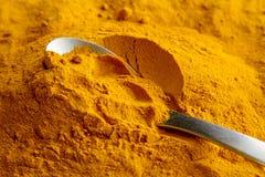 Organiskt gult gurkmejapulver royaltyfri foto