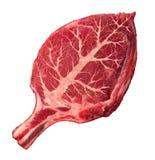 Organiskt kött royaltyfri illustrationer
