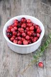 organiskt lantligt trä för bakgrundscranberries Arkivfoto