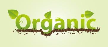 Organiskt - leafs och jordning Royaltyfria Bilder