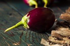 Organiskt rått behandla som ett barn indiska aubergine Royaltyfria Foton