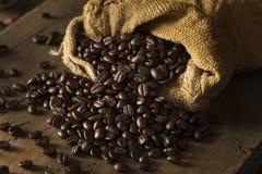 Organiskt torka grillade kaffebönor arkivbilder
