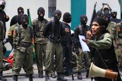 Organismes islamiques Images libres de droits