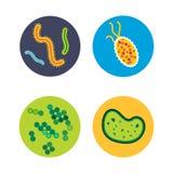 Organismo di microbiologia dell'icona dei microbi del virus dei batteri e malattia umani isolati microscopici di biologia di infe illustrazione vettoriale