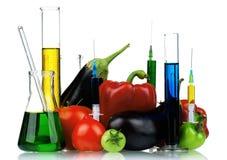 Organismo geneticamente modificato Immagini Stock