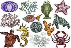Organismos da vida do oceano, shell, peixes, corais, cavalo de mar, caranguejo e tartaruga Foto de Stock
