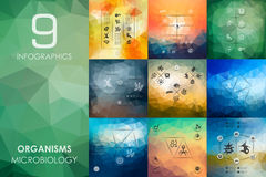 Organisms infographic with unfocused background Stock Photos