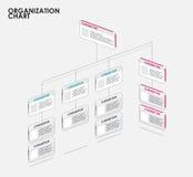 Organizaci mapy infographics z drzewem, diagrama przepływ wektor Zdjęcie Royalty Free