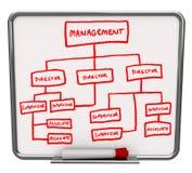 Organizaitonal Chart - Dry Erase Board Stock Photography