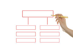 Organization chart Stock Photos