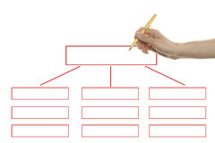 Organization chart Royalty Free Stock Photography
