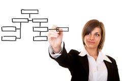 Organization chart Royalty Free Stock Photos