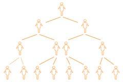 Organization chart. Illustration of organization chart on white background Stock Illustration