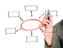 Organization chart. Man drawing an organization chart stock photography