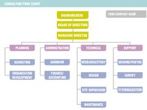 Organization Chart: consulting firm. Possible organization chart of a consulting firm Stock Illustration