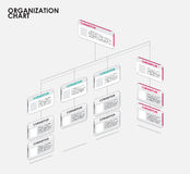 Organization chart infographics with tree, Diagram flow.  vector Royalty Free Stock Photos