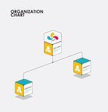 Organization chart infographics with tree, Diagram flow.  vector Stock Photos