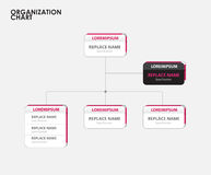 Organization chart infographics with tree. vector illustration.  Stock Photos
