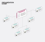 Organization chart infographics with tree. vector illustration Stock Images
