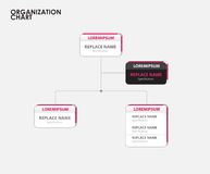 Organization chart infographics with tree. vector illustration Stock Photos