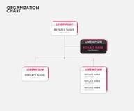 Organization chart infographics with tree. vector illustration Stock Photos