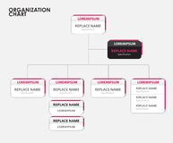 Organization chart infographics with tree. vector illustration Stock Photo