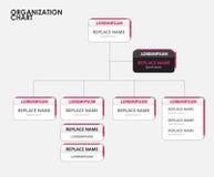 Organization chart infographics with tree. vector illustration Stock Photo