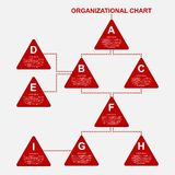 Organization chart template. Royalty Free Stock Photos