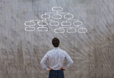 Organization and hierarchy concept. Organization concept, man looking at block scheme Royalty Free Stock Photo