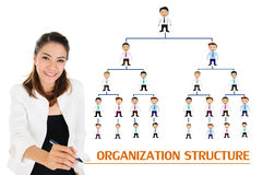 Organization structure of business concept stock photography