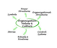 Organization Values & Culture. Diagram of Organization Values & Culture vector illustration
