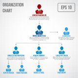 Organizational chart infographic Royalty Free Stock Images