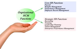 Organizational HCM Functions. Presenting diagram of Organizational HCM Functions Royalty Free Stock Photo
