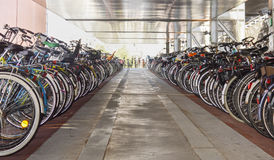 Organized bicycle parking in Amsterdam city centre Stock Image