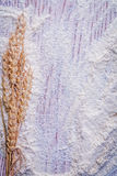 Organized copyspace bunch of wheat ears and flour Royalty Free Stock Photo