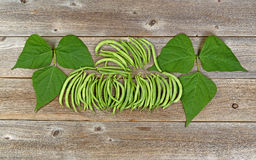 Organized green beans and leaves on rustic wooden boards Stock Photography