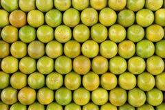 Organized Oranges Royalty Free Stock Image