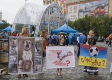 Organized rally protect of animals. KHARKIV, UKRAINE MAY 16:Organized rally protect of animals in connection with murder homeless animals to  EURO Championship Royalty Free Stock Photos