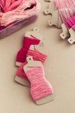 Organizzatore del filo di seta del ricamo Fotografie Stock
