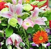 Organizzazione dei fiori Fotografia Stock